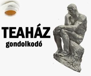 20131011teahaz